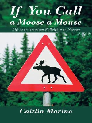 If You Call A Moose A Mouse