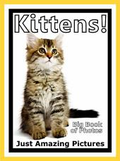 Just Kittens! vol. 1: Big Book of Kitten Cat Baby Cats Photographs & Pictures