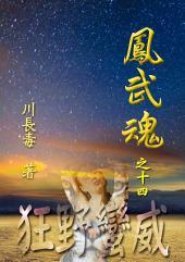 凤武魂之十四:狂野蛮威: 简体中文版
