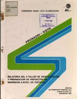 Relatoria Del Ii Taller de Identificacion Y Preparacion de Proyectos de Inversion a Nivel de Destrito PDF