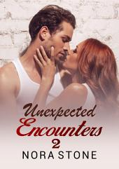 Unexpected Encounters 2: ( A BBW Erotic Romance)