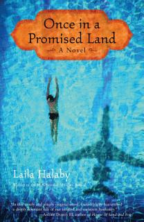 Once in a Promised Land Book
