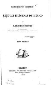 Cuadro descriptivo y comparativo de las lenguas indígenas de México: Volumen 1
