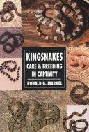 Kingsnakes PDF