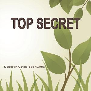 Top Secret PDF