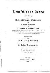 Deutschlands Flora: 19.1: Die Cichoriaceen, Ambrosiaceen, Campanulaceen, Lobeliaceen dazu die Cucurbitaceender deutschen Flora