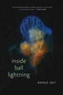 Inside Ball Lightning