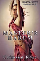 Master's Harem