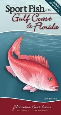 Sport Fish of the Gulf Coast   Florida PDF