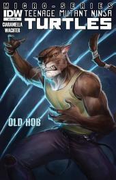 Teenage Mutant Ninja Turtles: Villain Micro-Series #3 - Old Hob