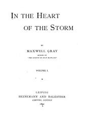 In the Heart of the Storm: A Tale of Modern Chivalry