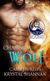 Chasing a Wolf