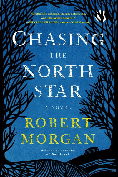 Download Chasing the North Star Book