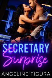Secretary Surprise (A Submissive BBW BDSM Fantasy)
