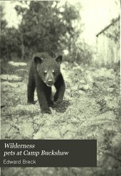 Wilderness Pets at Camp Buckshaw