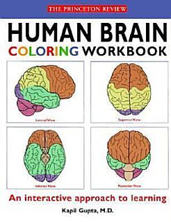 Human Brain Coloring Workbook Book
