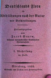 Deutschlands Flora: in Abbildungen nach der Natur mit Beschreibungen. ¬Abt. ¬I., Phanerogamen ; H. 60, Band 1,Ausgabe 60