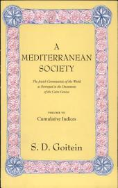 A Mediterranean Society: The Jewish Communities of the Arab World as Portrayed in the Documents of the Cairo Geniza, Vol. VI: Cumulative Indices