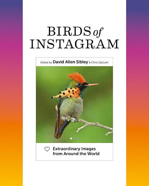 Download Birds of Instagram Book
