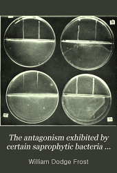 The antagonism exhibited by certain saprophytic bacteria against the Bacillus typhosus Gaffky