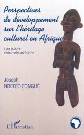 PERSPECTIVES DE DÉVELOPPEMENT SUR L'HÉRITAGE CULTUREL EN AFRIQUE: Les biens culturels africains