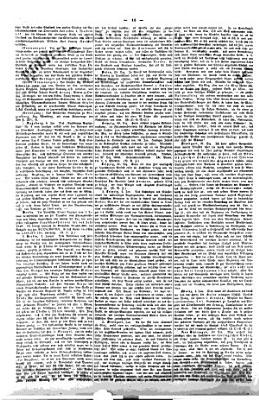 Deutsche constitutionelle Zeitung PDF