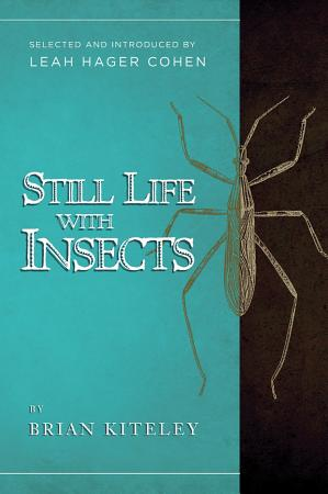 Still Life with Insects PDF