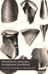 Zeitschrift der Deutschen Geologischen Gesellschaft: Band 41