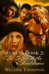 The Secret of the Bloodstones