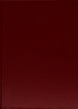 Flug Revue PDF