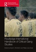 Routledge International Handbook of Critical Gang Studies PDF
