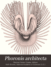 Phoronis Architecta: Its Life History, Anatomy and Breeding Habits, Volume 10, Part 4