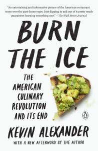 Burn the Ice Book