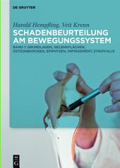 Schadenbeurteilung am Bewegungssystem: Band 1: Grundlagen, Gelenkflächen, Osteonekrosen, Epiphysen, Impingement, Synovialis