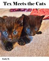 Big Tex   Friends  Tex Meets the Cats PDF