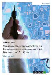 Managementinformationssysteme für Energieversorgungsunternehmen auf Basis von SAP NetWeaver