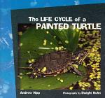 The Life Cycle of a Painted Turtle