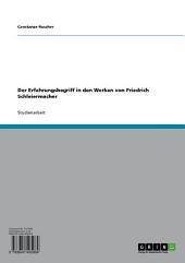 Der Erfahrungsbegriff in den Werken von Friedrich Schleiermacher