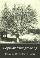 Popular Fruit Growing