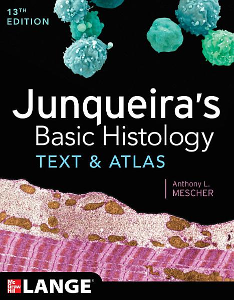 Junqueira S Basic Histology Text And Atlas Thirteenth Edition