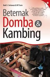 Beternak Domba & Kambing