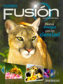 Fusion Florida, Grade 7