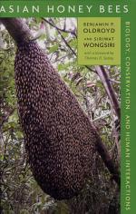 Asian Honey Bees