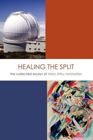 Healing the Split PDF