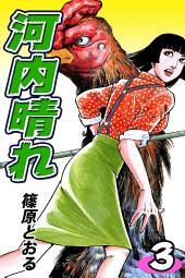 河内晴れ(3)
