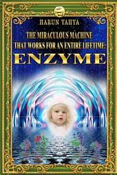 The Miraculous Machine That Works For An Entire Lifetime: Enzyme