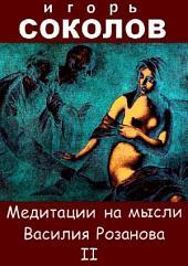 Медитации на мысли Василия Розанова: Том 2