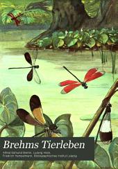 Brehms Tierleben: Bd. Vielfüssler, Insekten un Spinnenkerfe