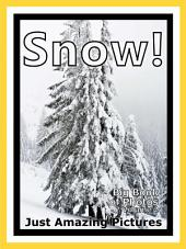 Just Snow! vol. 2: Big Book of Snowy Winter Weather Snowing Cold Snow Photographs & Pictures