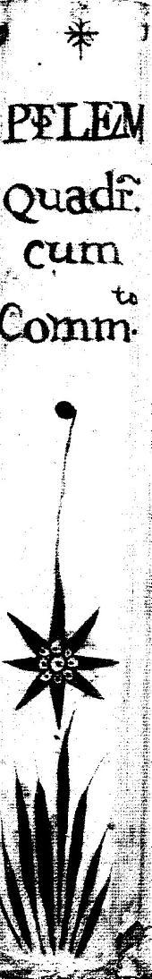 Quadripartitum opus
